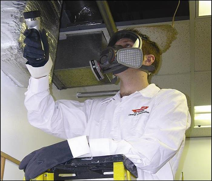 Well trained mold remediation technicians