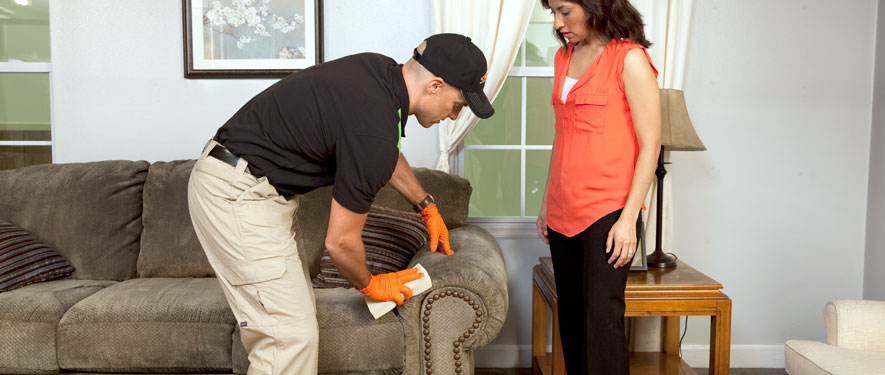 Independence, OR carpet upholstery cleaning