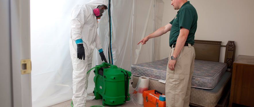 Independence, OR mold removal process